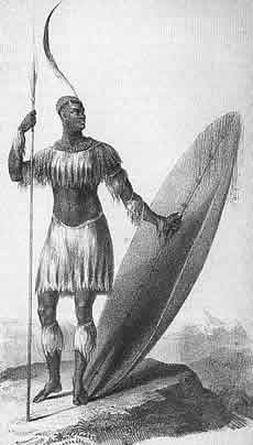 Shaka King of thr Zulus,, drawn by James King in 1825. The spear should be a short stabbing spear and the plume and shield are too long
